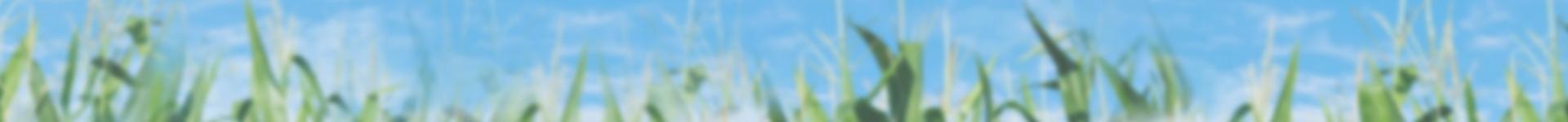 Understanding Iowa Soil Ratings