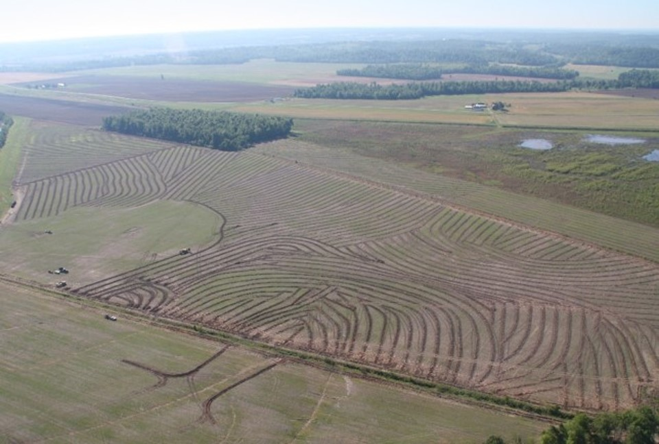 Pattern Tiled Field