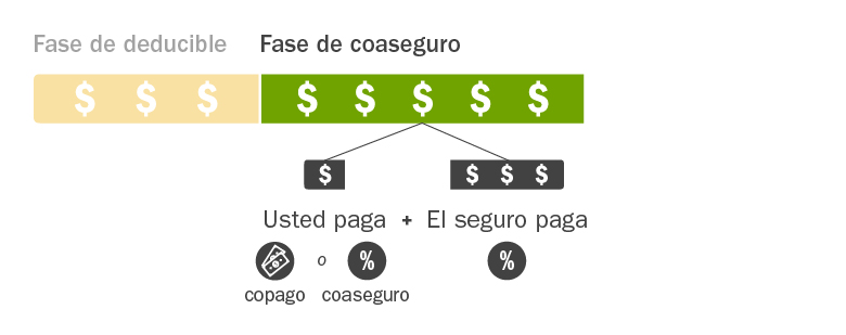 C4HC_Insurance-Costs-Explained_Spanish_Phase2