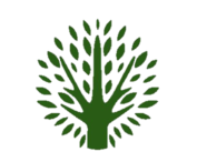 Olive Tree Projects