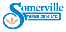 Somerville Farms