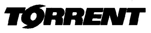 TORRENT SYSTEMS, INC.,