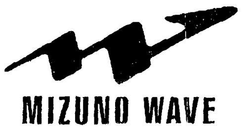 MIZUNO KABUSHIKI KAISHA (Mizun