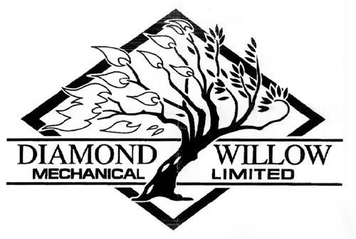 DIAMOND WILLOW MECHANICAL LTD
