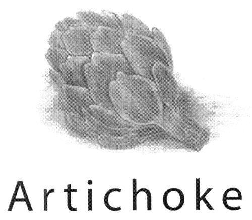Artichoke Design & Communicati