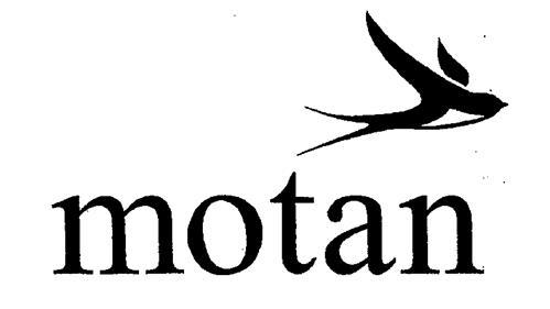 MOTAN HOLDING GMBH,