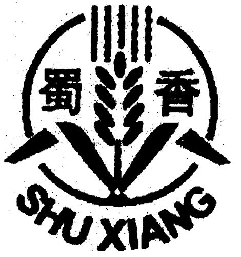SHU XIANG & Chinese Characters Design