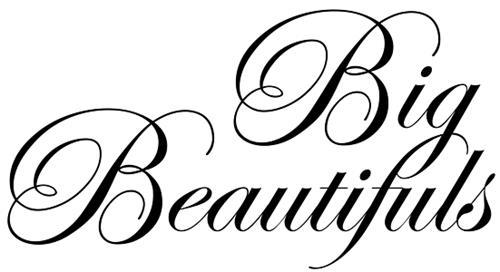 Big Beautiful Holdings Inc.