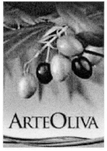 ARTEOLIVA & DESIGN
