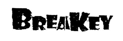BREAKEY B.V., a private limite