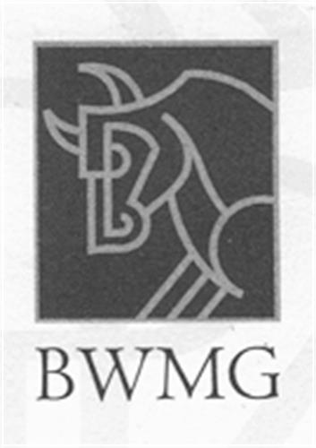 Bull Wealth Management Group I
