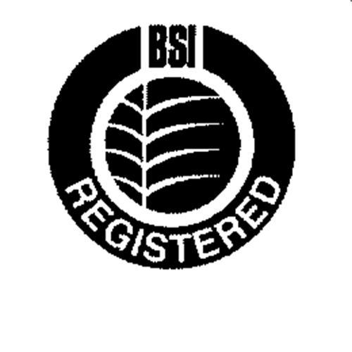 British Standards Institution