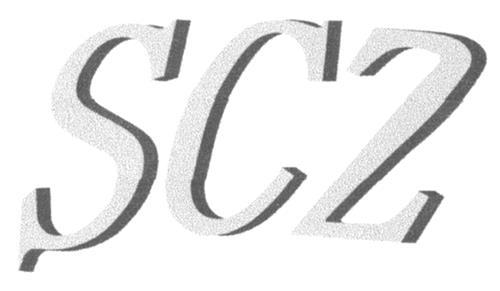 SZY (CANADA) ENTERPRISES INC.