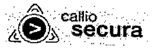 CALLIO TECHNOLOGIES INC.