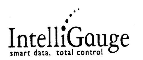 IntelliGauge Inc.