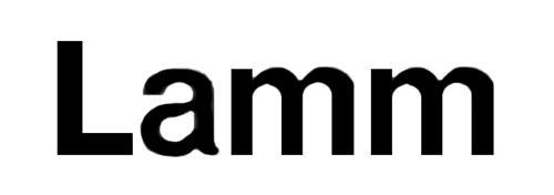 LAMM S.p.A.