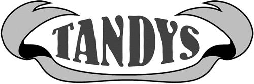Tandy's Manufacturing Enterpri