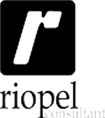 Riopel Consultant inc.