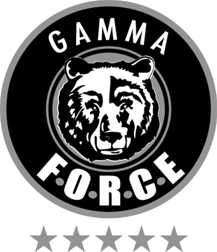 Les Entreprises Gamma Force In