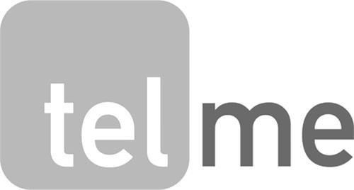 Telmetrics Inc.