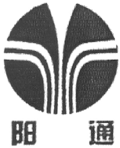 YANG TONG in Chinese Characters & Device