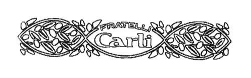 FRATELLI CARLI S.P.A.