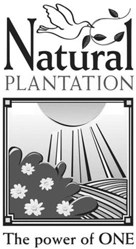 Natural Plantation Inc.