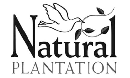 Natural Plantation Inc.