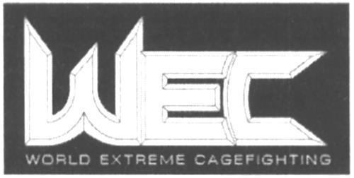 WEC Holdings, LLC (A Delaware