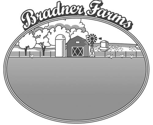 Donaldson Family - Bradner Far
