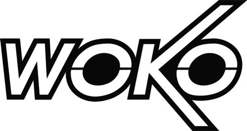 Woko Magnet- und Anlagenbau Gm