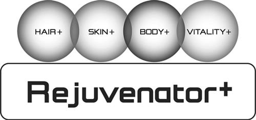 REJUVENATOR GROUP INC.