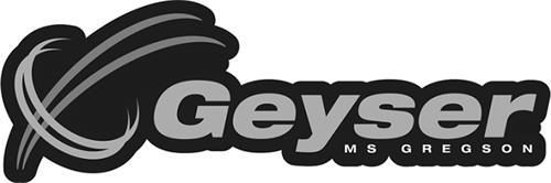 MS Gregson Inc.