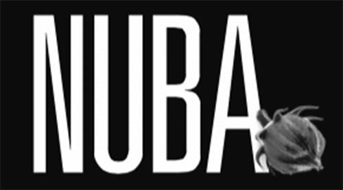 Nubia Food and Beverage Inc.