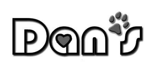 Dan's Arts Inc.
