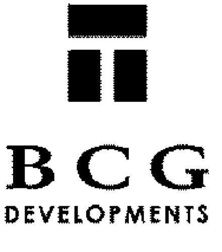 BCG Investments Inc.