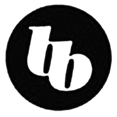 Bloom Burton Securities Inc.