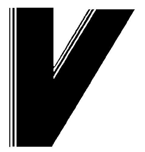 VIDEOSCOPE LTD.,