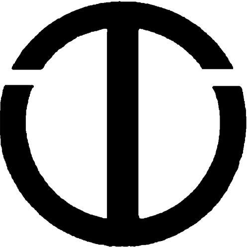TRANS WORLD INTERNATIONAL, INC
