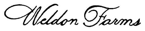 H.J. HEINZ COMPANY,