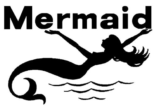 MERMAID MARINE ENGINES LIMITED