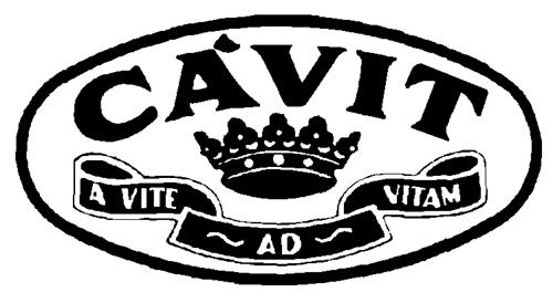 CAVIT CANTINA VITICOLTORI CONS