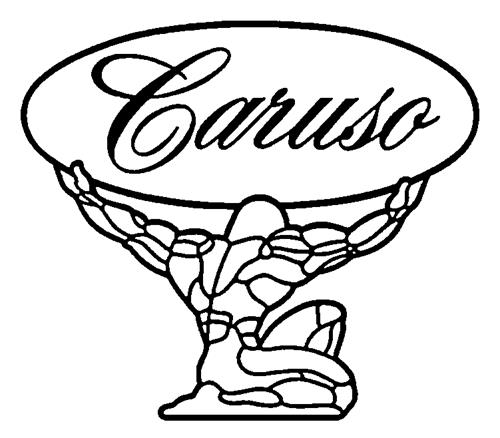 CARUSO FITNESS PRODUCTS INC.,