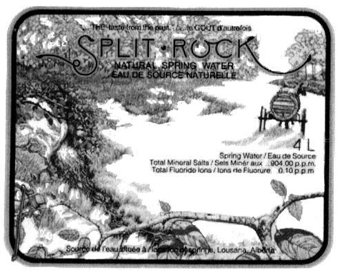 SPLIT ROCK NATURAL SPRING WATE