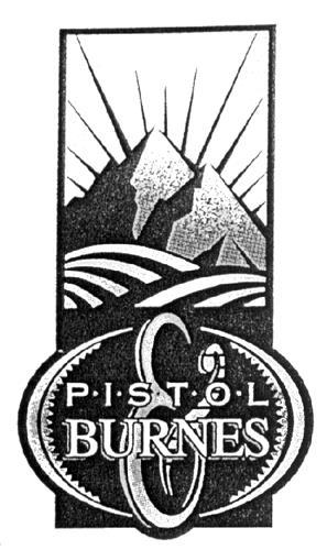 PISTOL & BURNES COFFEE ROASTER