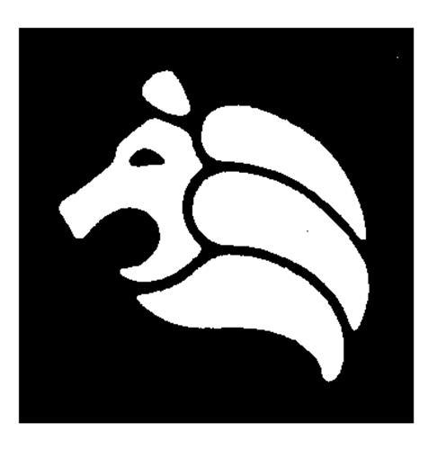 LION INTERNATIONAL TRAVEL SERV