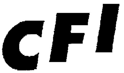 TForce Holdings Inc.