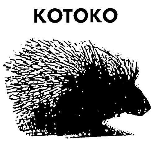 KOTOKO FOOD PRODUCTS INC.,