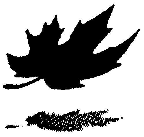CANADA TRUSTCO MORTGAGE COMPAN