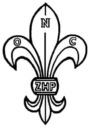 POLISH SCOUTING ASSOCIATION IN